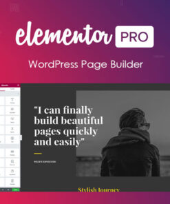 Elementor-PRO-WordPress-Page-Builder-gpl